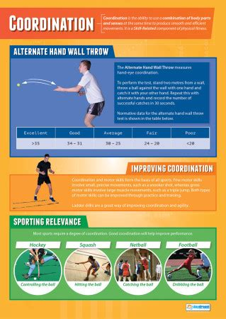 Co-ordination | Physical Education School Posters