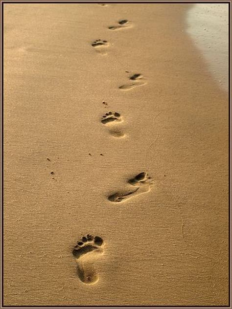 1000+ images about Footprints in the Sand on Pinterest