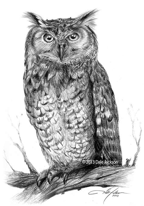 Eagle Owl drawing on Behance