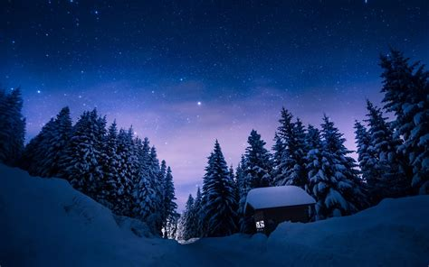 Stars Night Snow Forest House wallpapers | Stars Night