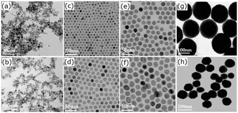 Materials   Free Full-Text   Fe3O4 Nanoparticles in